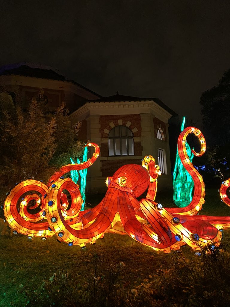pieuvre-océan en voie d'illumination @madamecrobalo