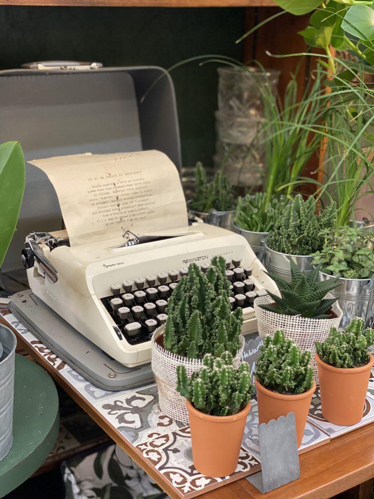 agenda-madameCrobalo-plantes